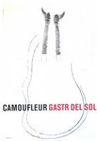Markus Oehlen:Camoufleur
