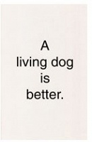 A living dog is better.