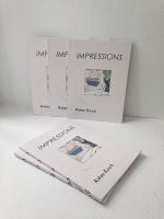 Aidan Koch:Impressions