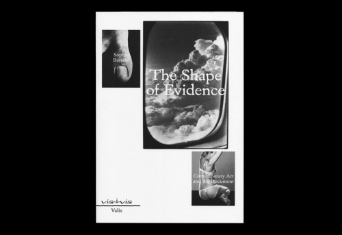 The Shape of Evidence