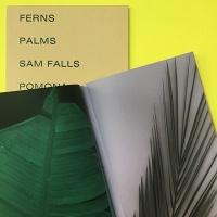 Sam Falls: Ferns andPalms