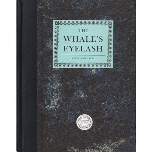 The Whale's Eyelash