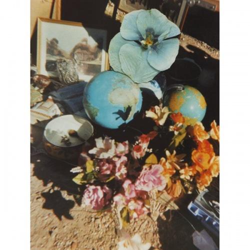 hackney flowers