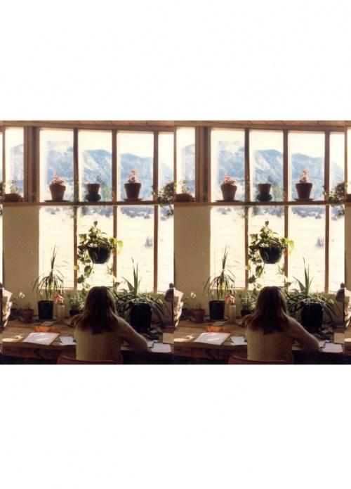 The Domestic Scene: Nicholas Gottlund