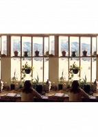 Nicholas Gottlund: The DomesticScene