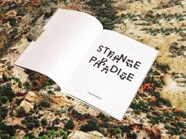 Charlie Rubin: StrangeParadise