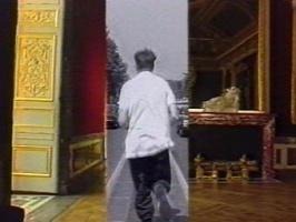 Dans la Vision Péripheérique du Temoins