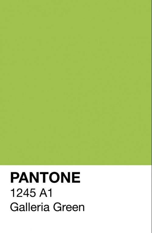 Galleria Green Pantone Poster