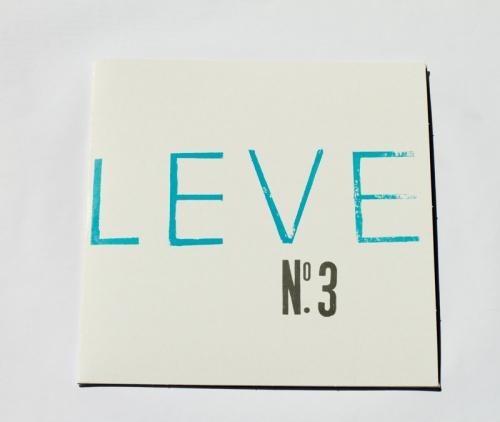 LEVE 3