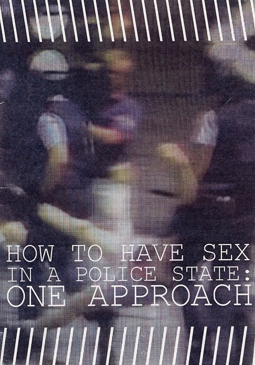 how to have sex in a police state