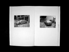 Luis Molina-Pantin: Auto-censorship (2013)