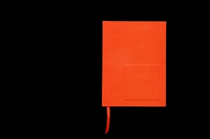 Luis Molina-Pantin: Orange Monochrome