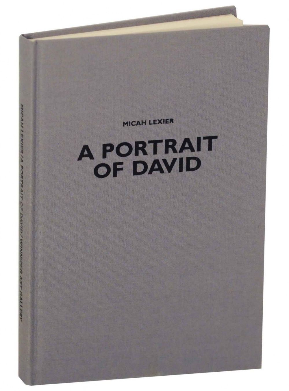 A Portrait of David cover