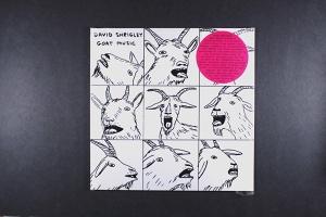David Shrigley: GoatMusic
