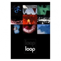 Selected Works by the Loop Collective