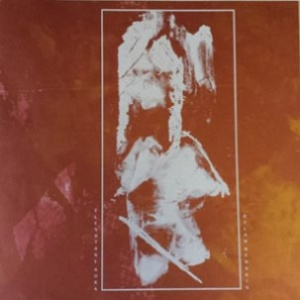 Fleshtone Auras/Dylan Nyoukis Split LP