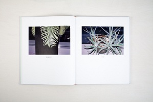 Polly Brown: PLANTS