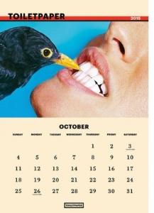 Toilet Paper 2015 Calendar