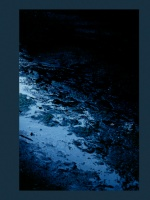 Filipe Casaca: Blue Mud Swamp