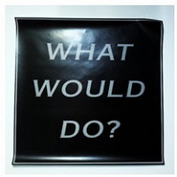 Sandy Plotnikoff: What Would Do? Poster