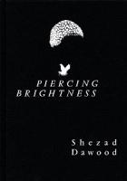 Piercing Brightness | Shezad Dawood
