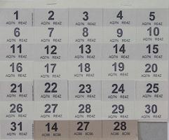 Sara MacKillop:Calendar