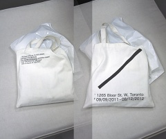 Shane Krepakevich: The Gendai Tote Bag