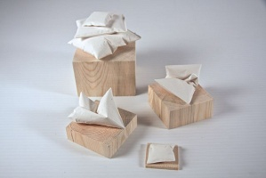 Anthony Cooper: Pillows (small)