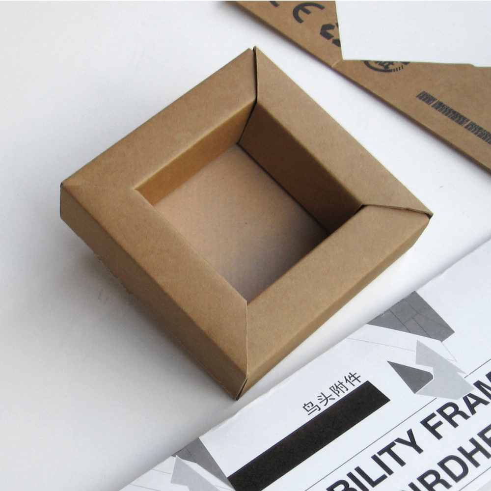 Birdhead Retrievability Frame for Polaroid