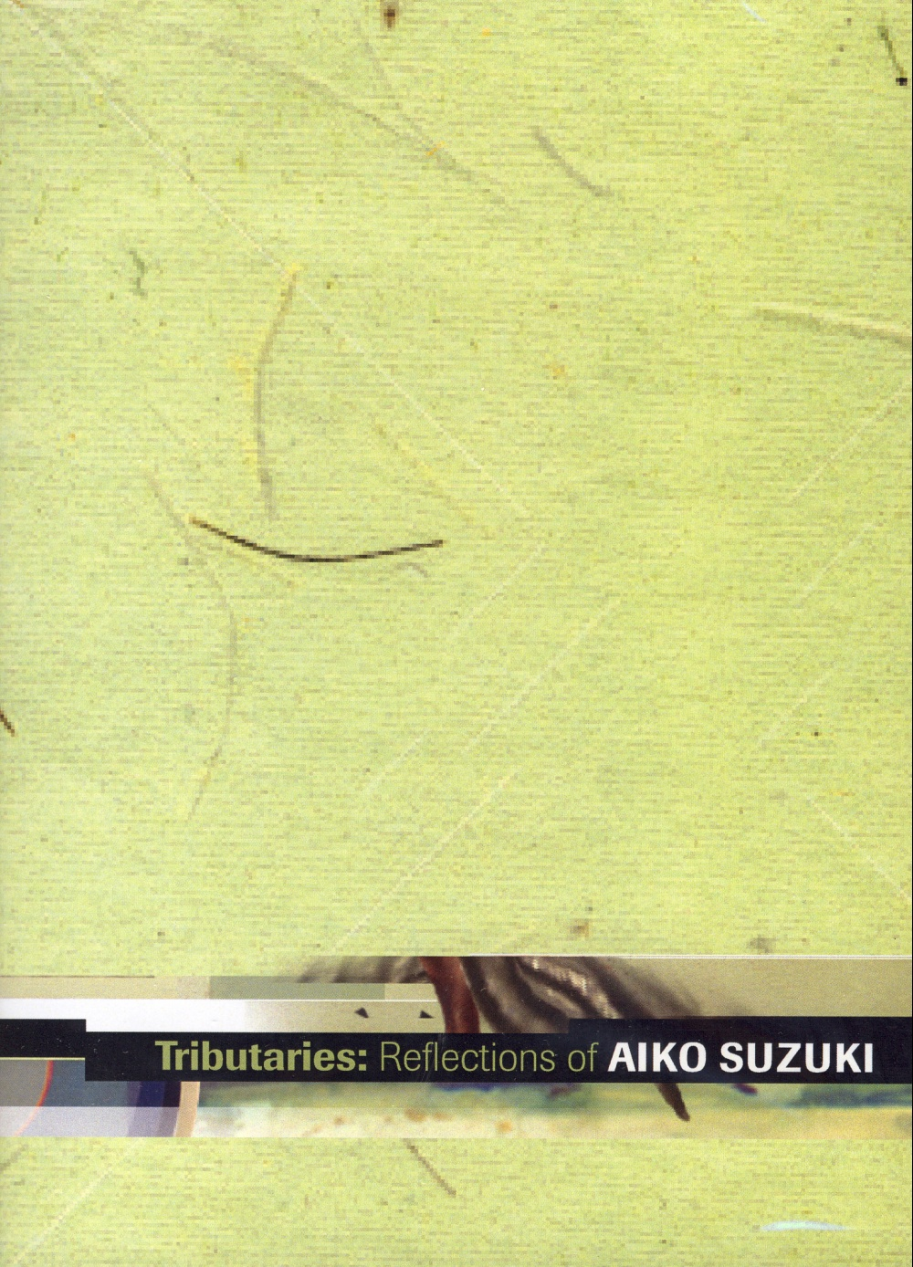 Tributaries: Reflections of Aiko Suzuki