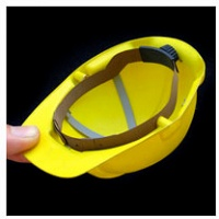 Bill Burns: Safety Gear for Small Animals Hard Hat