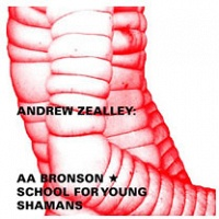 Andrew Zealley: ANDREW ZEALLEY: AA BRONSON'S SCHOOL FOR YOUNG SHAMANS