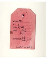 Arnaud Maggs: Works 1976-1999