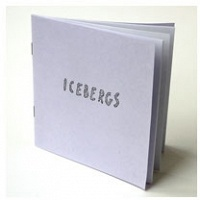 Amy Lam:Icebergs
