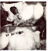 13 Moons and Disguises: split album