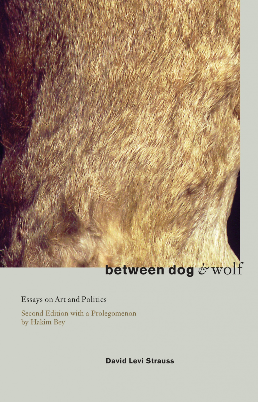 Between Dog and Wolf  Essays on Art & Politics  David Levi Strau