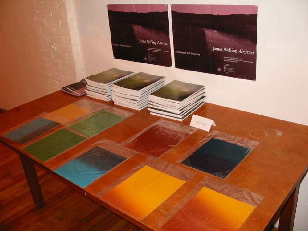 James Welling reception