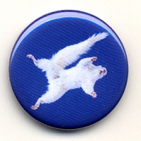 Michael Werner: White Squirrel Magnet