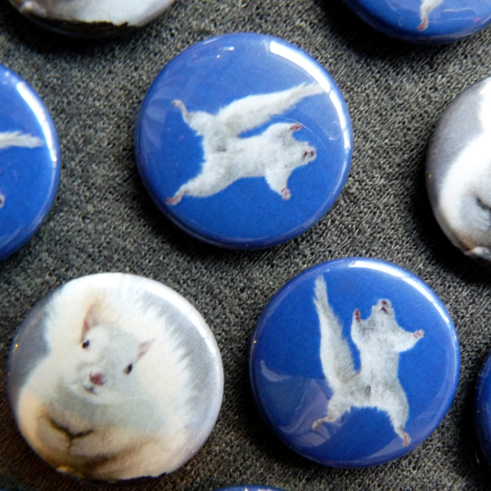 White Squirrel Buttons